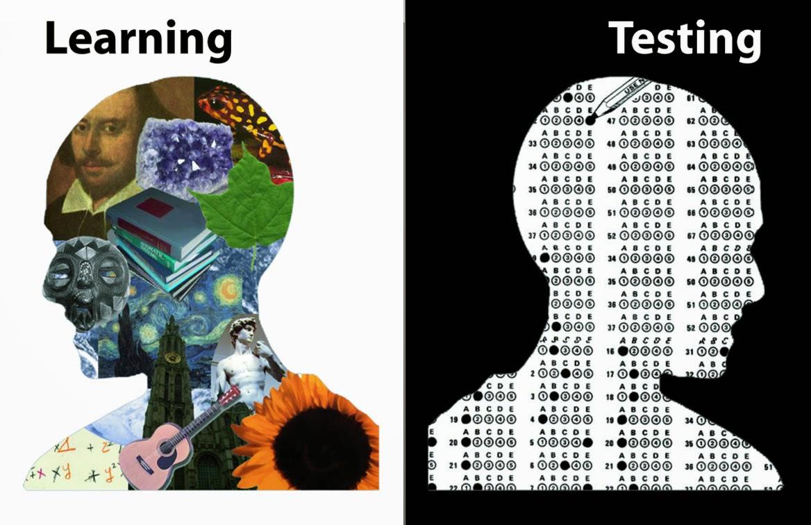 learning versus testing